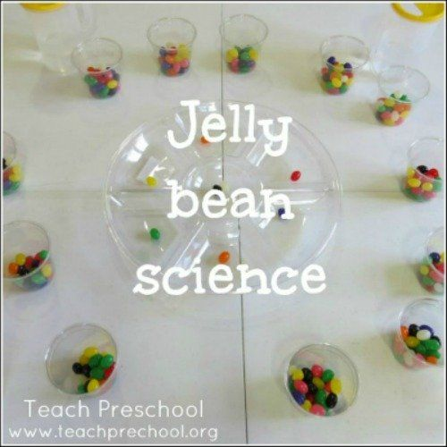 After introducing the letter Jj this week, we reinforced our new letter's sound with some j-j-jelly bean science...    For this activity, each child started with their own cup of assorted jelly beans...    The children then took