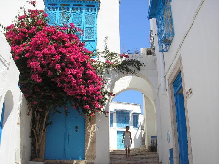 ユーラシア旅行社のチュニジアツアーでは、シディ・ブ・サイドにご案内します