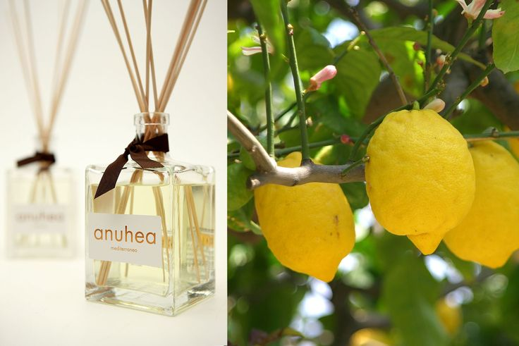 Anuhea® Mediterraneo The distinctive scent of the citrus gardens along the Italian coastlines, bathed in the sun and with unforgettable aromas. www.allegriniamenities.com