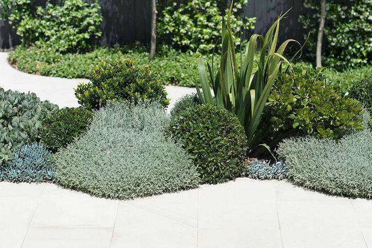 Drought tolerant plantings. Inner City Garden by Secret Gardens