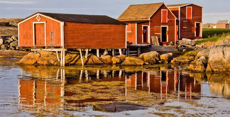 Red Ochre Sheds, Tilting, Fogo Island, Newfoundland, Canada