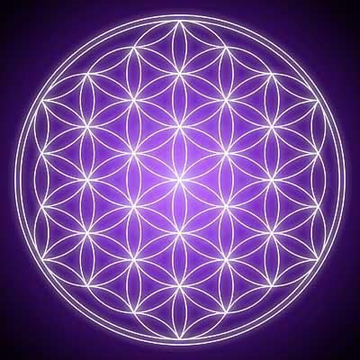 Flower of life this size is a hexagon