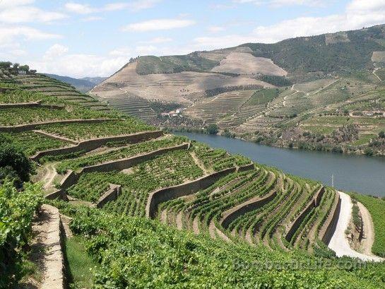 Douro River Valley, Portugal  Bombastic, Bombastic, Bombastic!