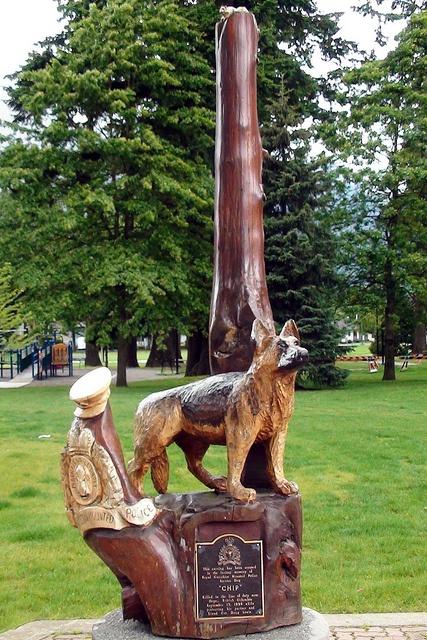 Hope British Columbia: RCMP Dog 'Chip' by Karen Morton's Pics, via Flickr. www.HopeBC.ca