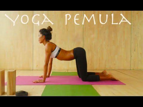 Cara Membakar Lemak Tubuh dengan 30 Menit Gerakan Yoga - YouTube