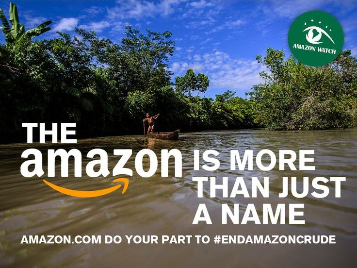 TELL Amazon.com: Do your part to #EndAmazonCrude! - Amazon.com should use its influence for good by cutting its use of fuel made from Amazon crude, investing in vehicles powered by renewable energy, and speaking out about the importance of protecting the real Amazon.  Please Sign & Share!