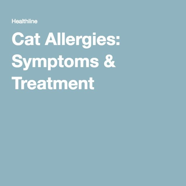 The 25 Best Cat Allergies Ideas On Pinterest Allergic