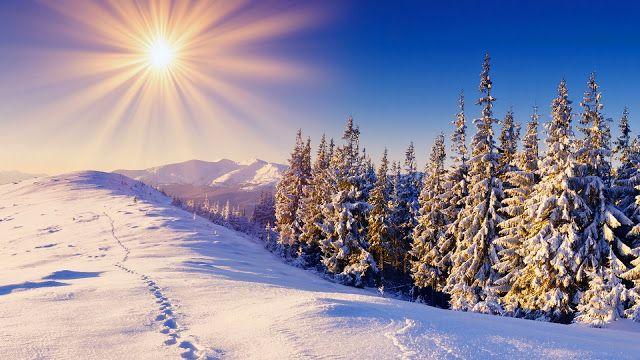 Winter sun - High Definition Wallpapers - HD wallpapers iPhone X Wallpaper 361765782538295824 6