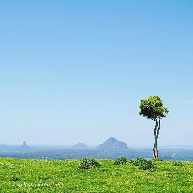 Explore Maleny with its beautiful blue skies and the greenest grass and the…