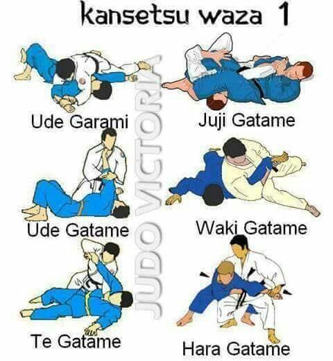 mixed martial arts training manual pdf