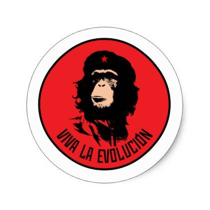 Viva la evolucion classic round sticker sticker stickers custom unique cool diy