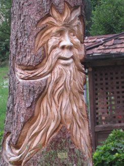 old man of the forest---- even if he looks a bit like a Bigfoot with gas!