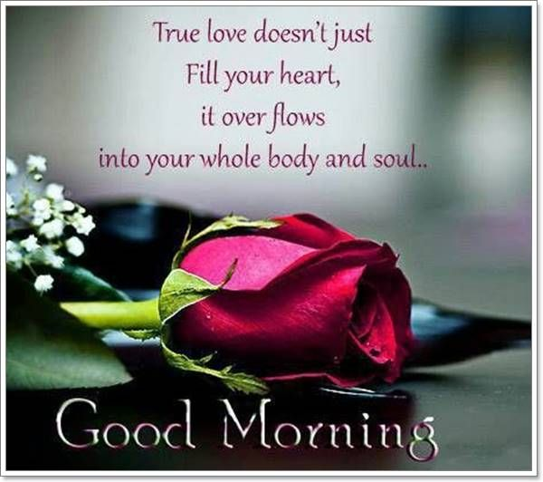 If You Have Already Found Your Boyfriend Or Girlfriend Then Know That You Are One Of The L Good Morning Quotes Funny Good Morning Quotes Morning Quotes For Him