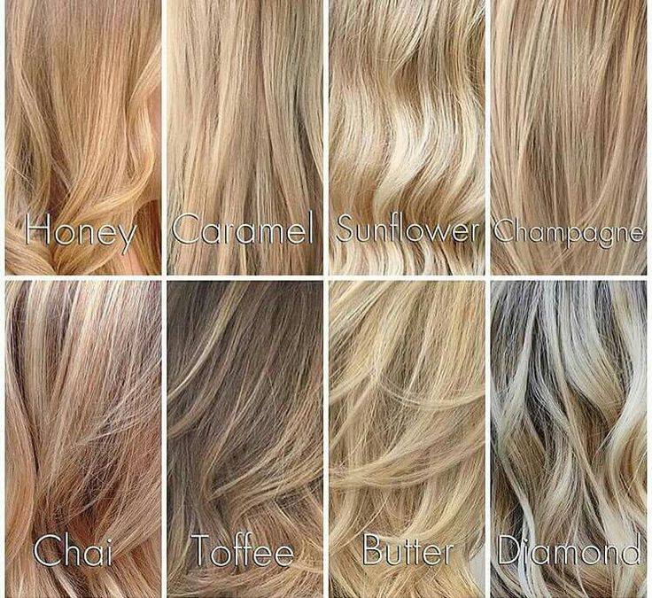 Different Shades of Blondes                                                                                                                                                                                 More