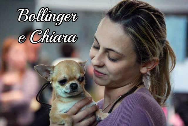Voglia di tenerezze tra Bollinger e la sua Chiara #MyDogAndMe