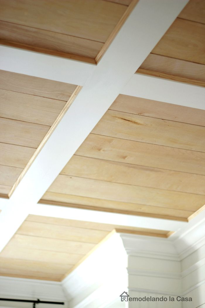 Best 25+ Accent ceiling ideas on Pinterest | Teal ceiling ...