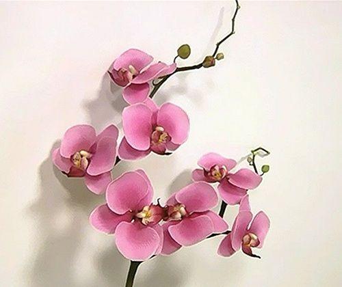 Орхидея-мастер класс