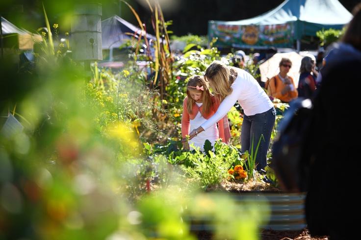 Queensland Garden Expo 2011