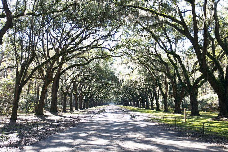 WORMSLOE PLANTATION - Savannah, Georgia