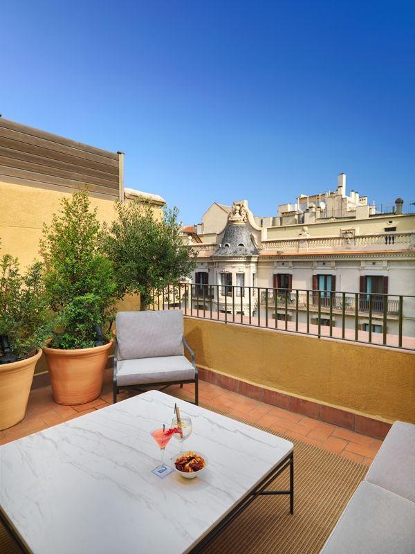 Un olivo en el balcón con vistas a lo mejor de Barcelona.