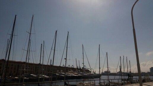 Acquario di Genova in Genova, Liguria