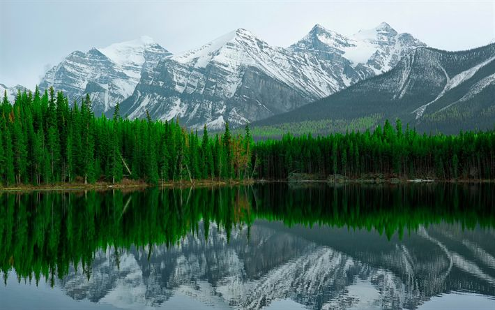 Download wallpapers Herbert Lake, 4k, mountains, Alberta, Banff National Park, Canada