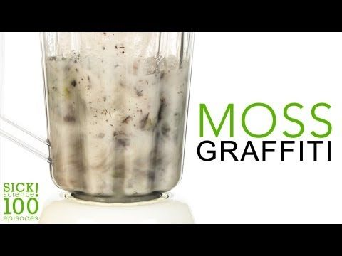 How to Make Moss Grafitti DIY Projects Craft Ideas & How To's for Home Decor with Videos