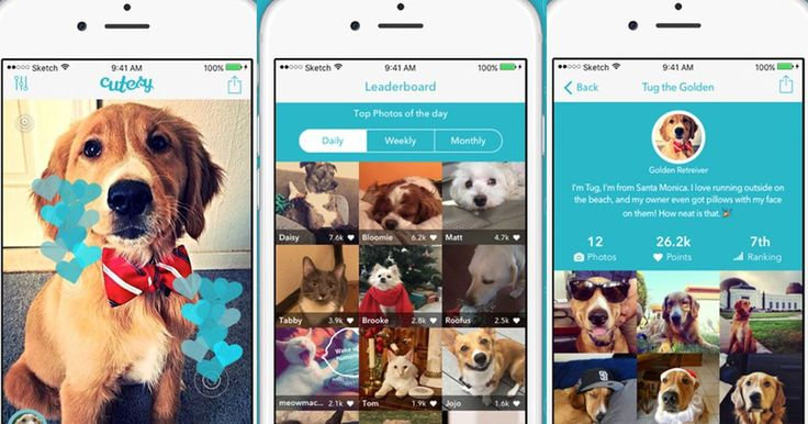 7 can't-miss apps: Sportle Cutesy Dungeon Tiles and more