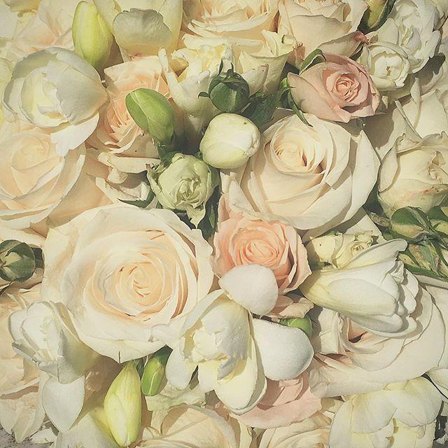 bouquet romantico rose bianche e cipria