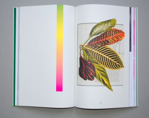 SODA PALM SUITE 2011 book published: 2011.04size: 196 x 317 mmpages:144 pagesprice: 85,00 euro (includes shipping in NL)extra: edition: 300 only + 1 unique work inside each From September to November 2010 Lotte Geeven stayed as artist in residence at Cemeti in Yogyakarta, Indonesia. On site she collected and researched patterns and plants wanting to find out more about the meaning and role of these reoccurring images within her body of work. This search moved from banana plantations in the…