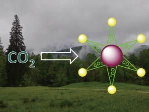 Single-step process transforms carbon dioxide into building blocks for polymeric materials