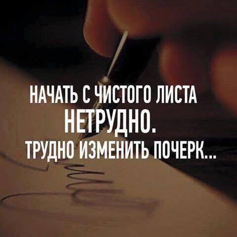 13592596_1749161261992998_7967012441496104912_n.jpg (480×480)