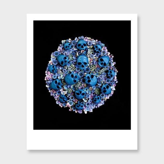 Blue Moon Photographic Art Print by Georgie Malyon See: http://www.endemicworld.com/blue-moon-photographic-art-print-by-georgie-malyon.html