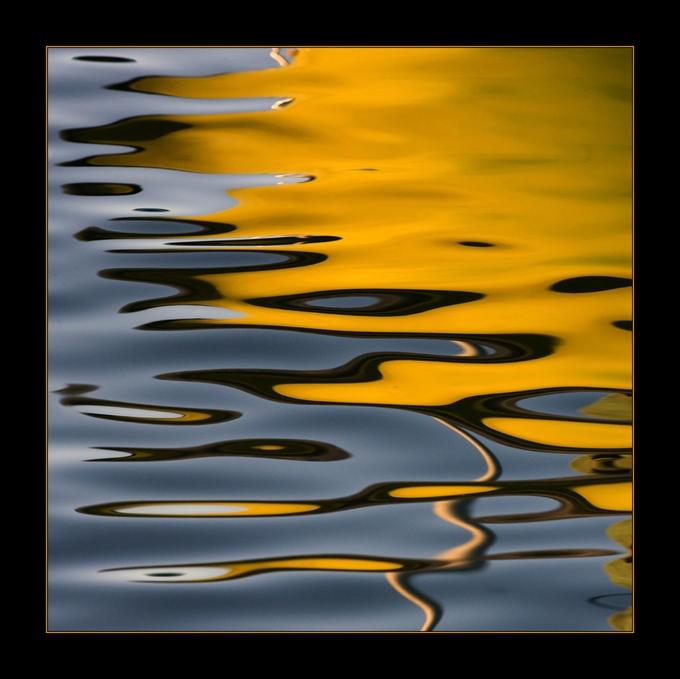 """""""Reflection""""      By: Sadegh Miri"""