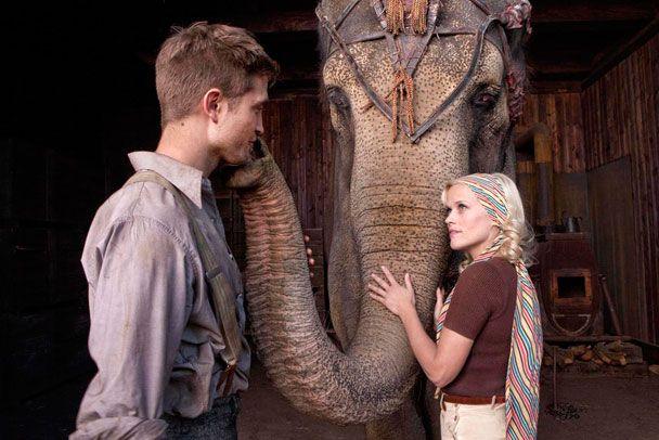 """""""Água Para Elefantes"""" vai virar musical da Broadway - http://metropolitanafm.uol.com.br/novidades/entretenimento/agua-para-elefantes-vai-virar-musical-da-broadway"""