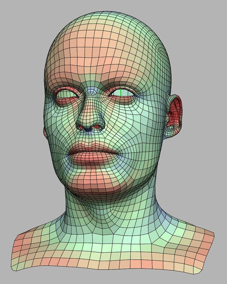 automob 3d anatomy tutorial - 735×921