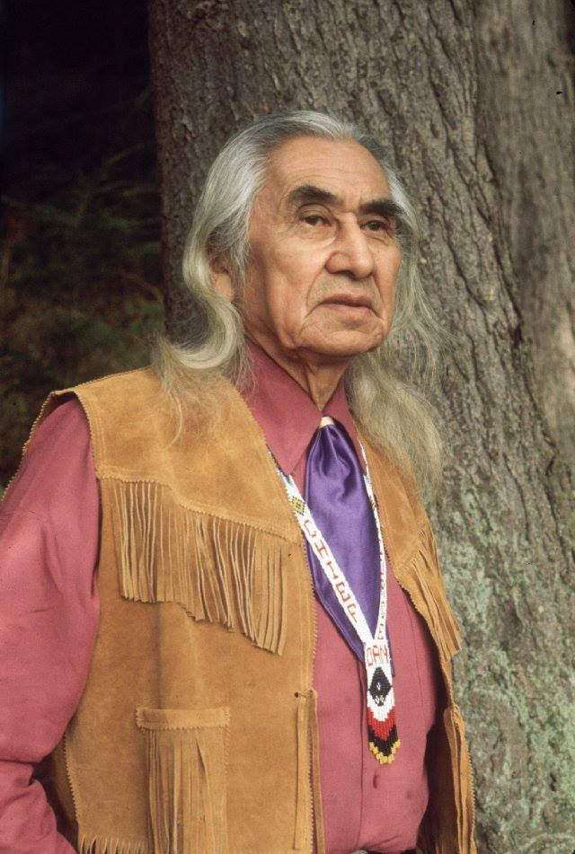 beauty of the trees by chief dan george This pin was discovered by monte_alto discover (and save) your own pins on pinterest.