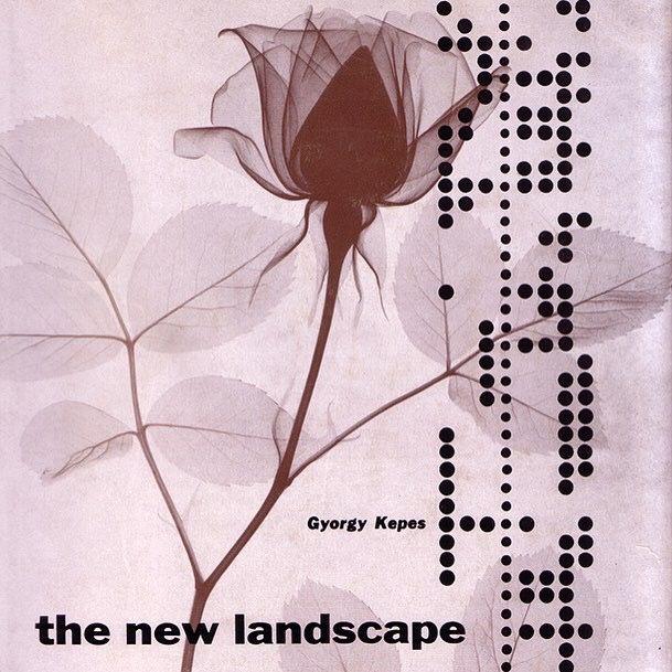 The New Landscape www.bulleconcept.com