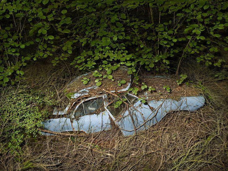 Man's best friend laid to rest in Peter Lippmann's Paradise Parking series.