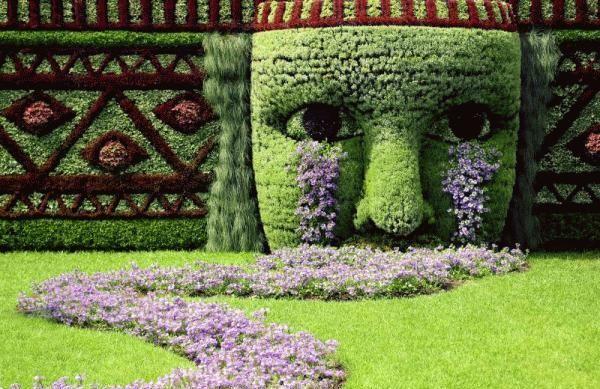 Stunning garden.