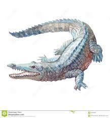 """Résultat de recherche d'images pour """"watercolor crocodile"""""""
