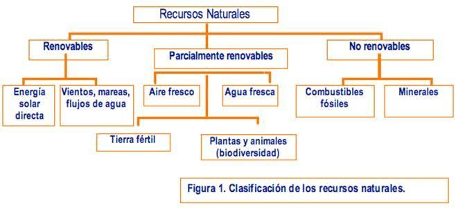 Resultado de imagen para conservación, la recuperación y el uso sustentable de los recursos naturales renovables y no renovables