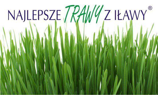 Logo na trawie