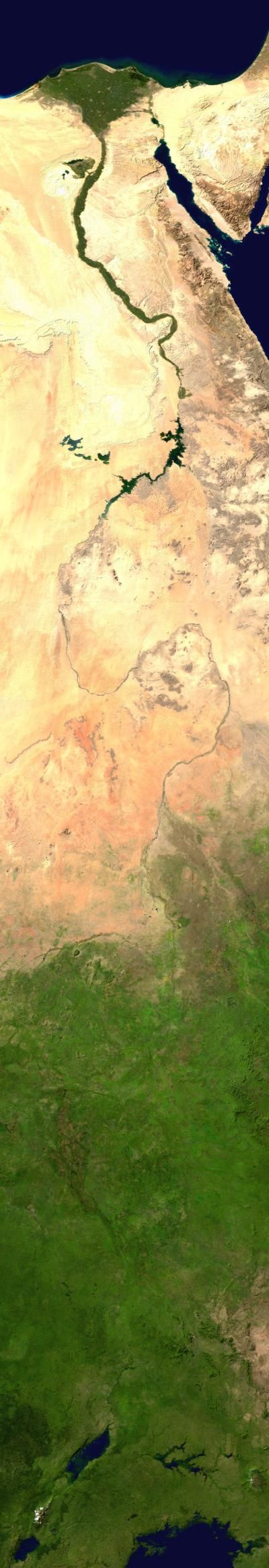 This shows a full satellite view of the Nile River. You can see the differences in the width of the river as it travels through the desert and at its end at the Mediterranean Sea. It is more difficult to track once the surrounding area gets full of life again, but based on the nearby lakes, you can locate the origins of the Blue and White Nile Rivers.