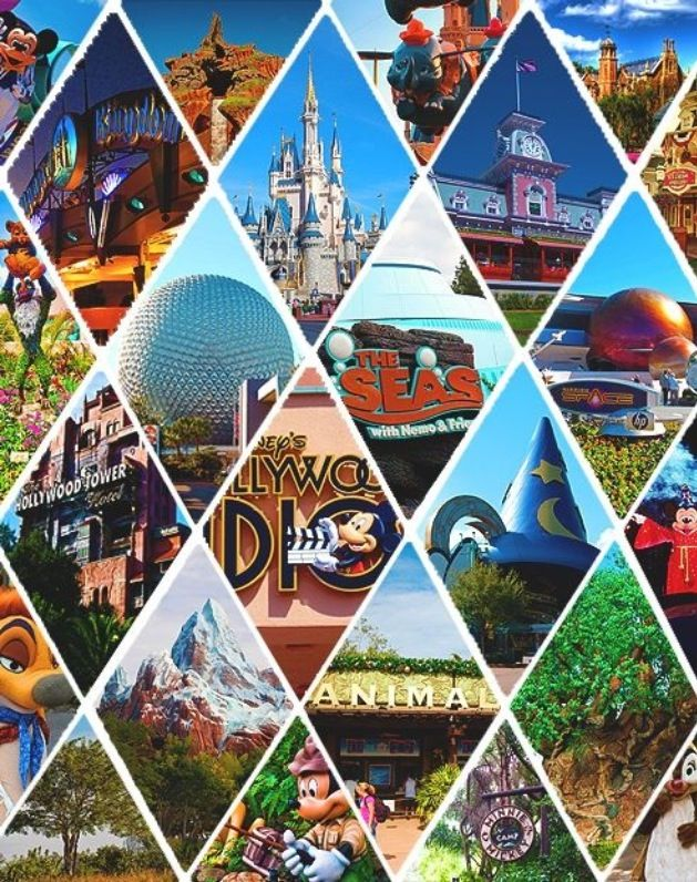 Love this! Walt Disney World highlights