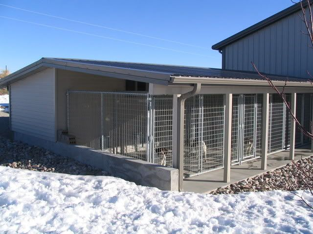 Best 20+ Dog Kennel Inside Ideas On Pinterest | Inside Dog Houses, Animal  House Rescue And Hotels That Take Dogs