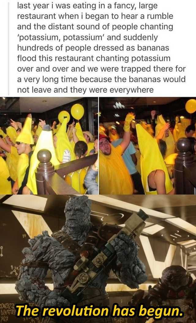 Imgur Post Imgur in 2020 Memes, Top memes, Single memes