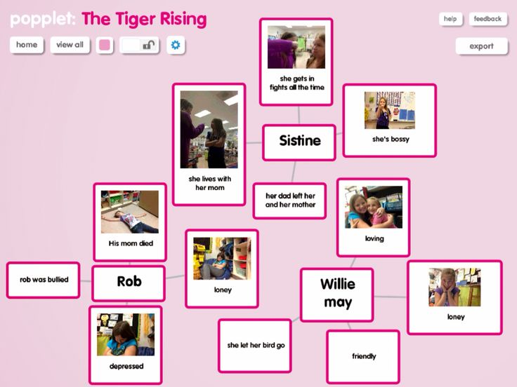 1000 Images About Tiger Rising Chapter Book On