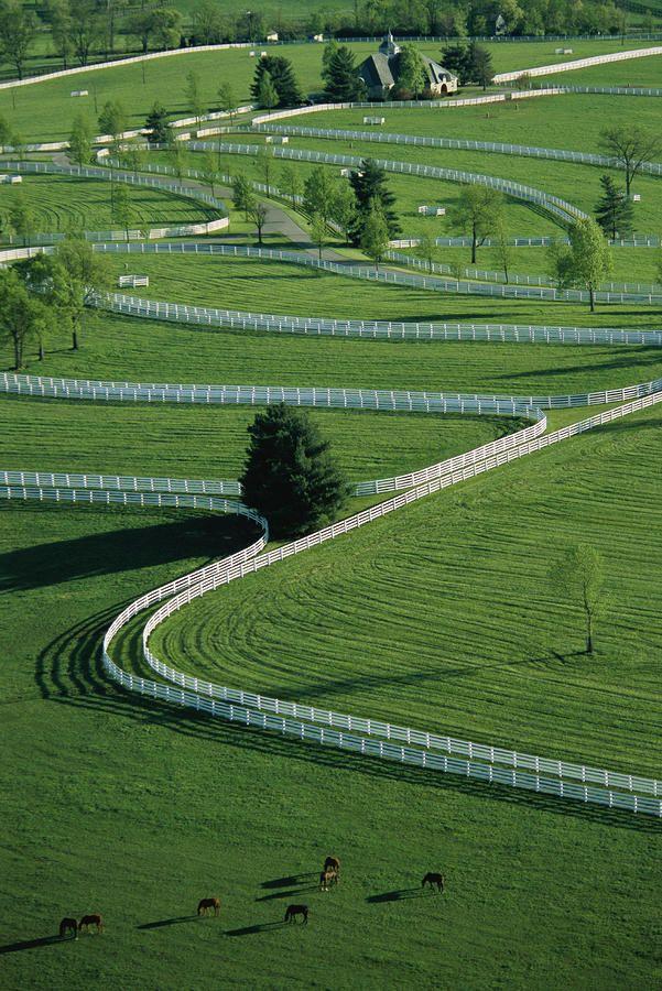 Aerial View Of Donamire Farm in Lexington, Kentucky