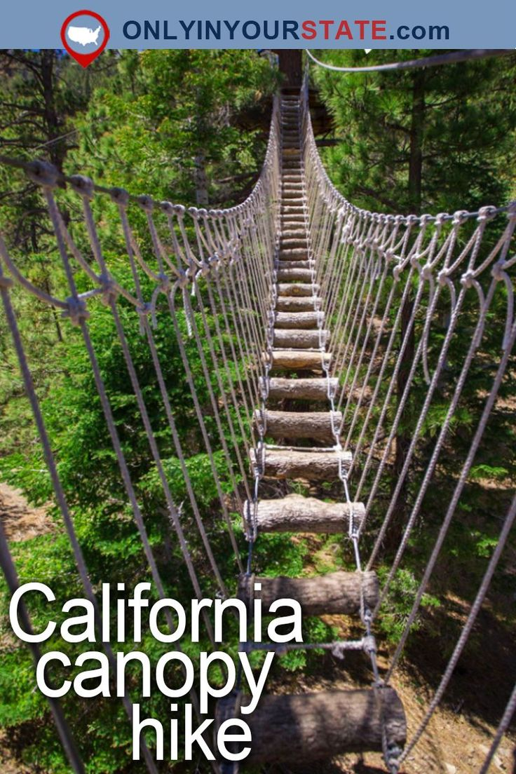 Travel | California | Attractions | USA | Things To Do | Bucket List | Places To See | Road Trips | Weekend Getaway | Family Fun | Adventure | Outdoor | Natural Wonders | Day Trips | Mountains | Canopy Tour | Canopy Walk | Scenery | Beautiful Places | Nature | Sky Bridge | Aerial | Hidden Gems